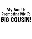 My Aunt Is Promoting Me To BIG COUSIN! Cute & Funn