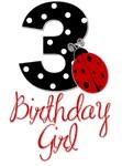 1 Ladybug BIRTHDAY GIRL.