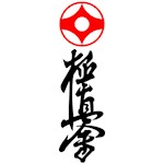 Kyokushin karate teeshirts