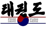 TKD shirts - Free demo, Push here