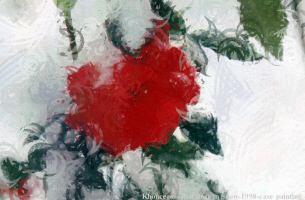 Really Red Rose in Winter by A. Celeste Sheffey