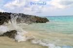 Pink Sandy Beach in Bermuda by Khoncepts