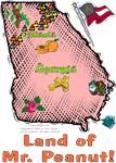 GA - Land of Mr. Peanut! (2003 flag)