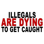Illegals Are Dying D25MX1