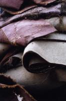 6 Different Views Of A Dumpster Photographs
