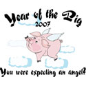 Year of The Pig Baby T-Shirts