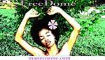 FreeDome
