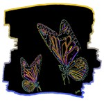 two colorful neon butterflies art illustration