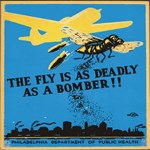 The fly is deadly