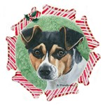 Rat Terrier Christmas