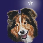 Shetland Sheep Dog Christmas