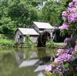 Historic Buildings and Scenic America