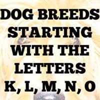 Dog Breed Gifts K - O