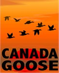 Goose T-Shirts