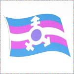 Transgender Pride v.3