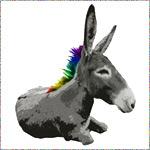 Rainbow Democrat
