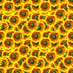 Sunflowers Flower Pattern