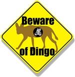 Beware of Dingo!