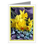 ...Narcissus 03...