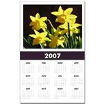 ...Daffodils 03...