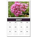 ...Wild Flower 02...