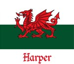 Harper Welsh Flag