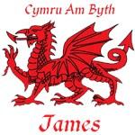 James Welsh Dragon and Motto