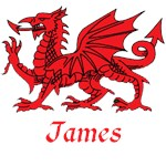 James Welsh Dragon