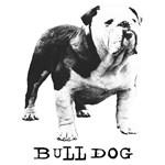 Bulldog Greats Goober