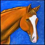 Paint Quater Horse Sonny