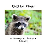 Raccoon Animal Totem Gifts Apparel and Drinkware