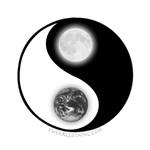 Yin Yang Earth Moon