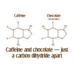 Caffeine & Chocolate - Goodies