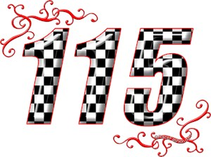 115 checkered number
