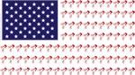 BMX American Bicycle Flag