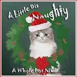 Danika Ragamuffin Christmas