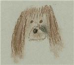 Brown Pastel Dog