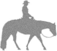 Western Pleasure Pixels