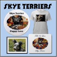 Skye Terrier's
