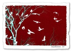<h1>THE BIRDS</h1>
