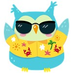 Cute Cool Beach Owl Shades