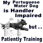 Portuguese Water Dog Agility