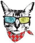 Cat with sunglass