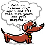 Wiener dog (floors)