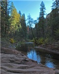 Oak Creek at West Fork 1216