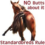 Standardbreds Rule