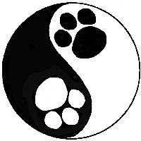 Tao of Dog