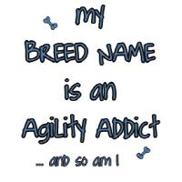Agility Addict