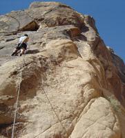 ClimbSmart 2006