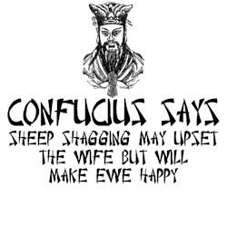 Confucius says rude Confucius saying shirt